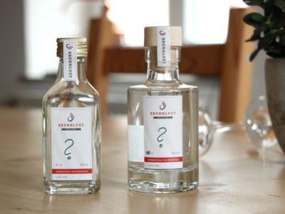 Was ist Gin?