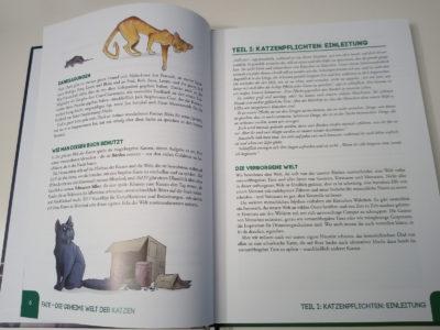 Tipps für Katzen